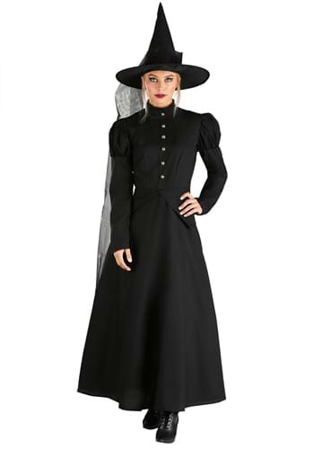 Click Here to buy Womens Deluxe Witch Costume from HalloweenCostumes, CDN Funds