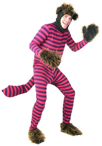 Plus Size Cheshire Cat Costume By: Fun Costumes for the 2015 Costume season.