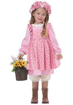 Toddler Little Praire Girl Costume