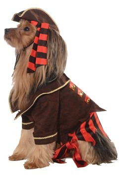 Pirate Boy Pet Costume
