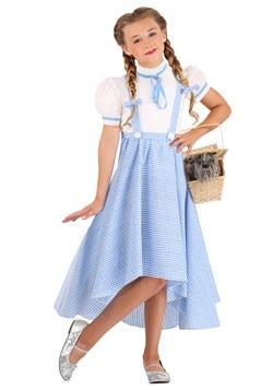 Girl's Hi-Lo Gingham Dress Costume