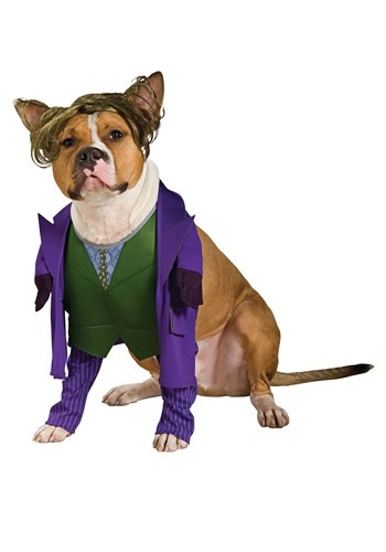 Joker Costume For Pets
