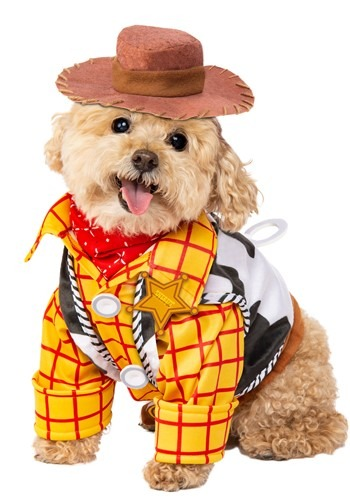 Click Here to buy Disney Toy Story Woody Pet Costume from HalloweenCostumes, CDN Funds