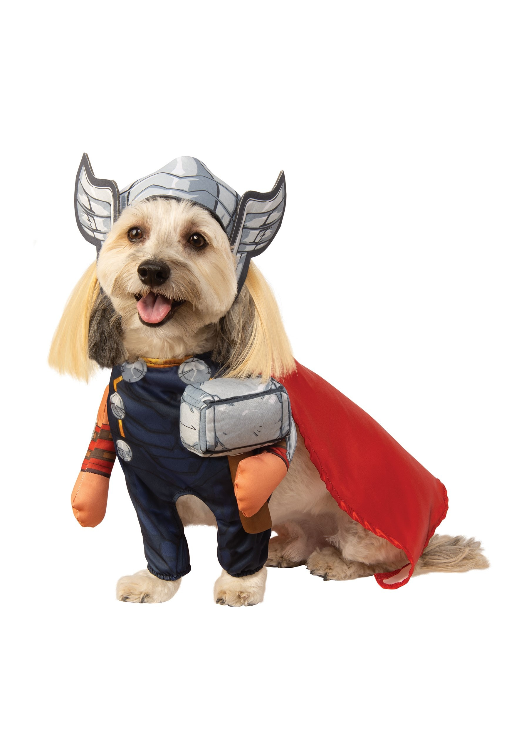 Pet Thor Costume