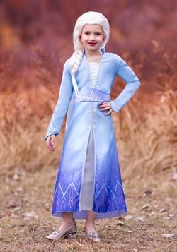 Frozen 2 Girls Elsa Prestige Costume upd
