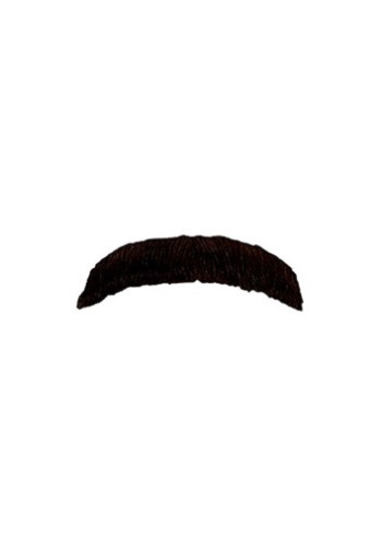Click Here to buy Italian Plumber Mustache from HalloweenCostumes, USA Funds & Shipping