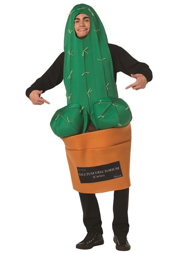 Adult Happy Cactus Costume