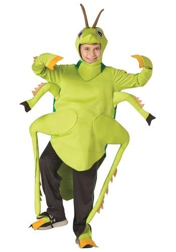 Child Grasshopper Costume