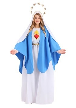 Women's Plus Size Nativity Mary Costume