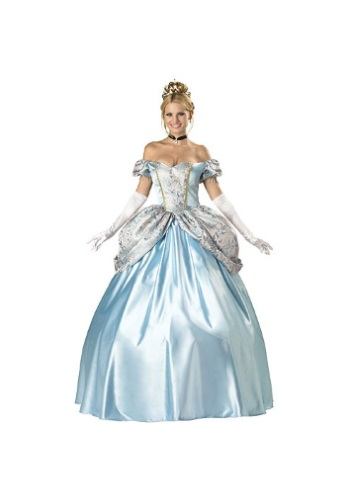 Click Here to buy Elite Enchanting Princess Costume from HalloweenCostumes, USA Funds & Shipping