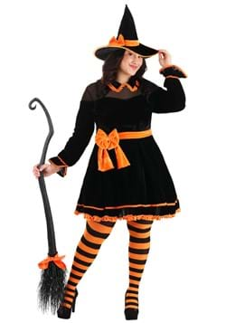 Womens Plus Size Crafty Witch Costume