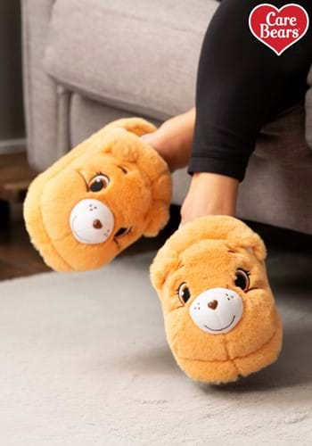 Adult's Tenderheart Care Bear Slippers