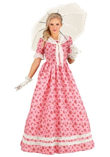 Lovely Southern Belle Costume
