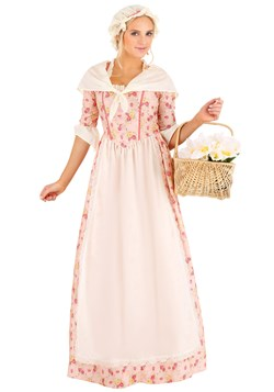 Women's Colonial Dress Costume