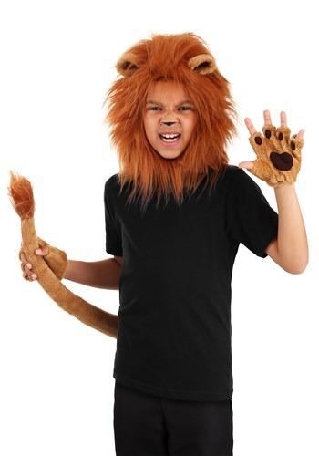 Child Deluxe Lion Kit1