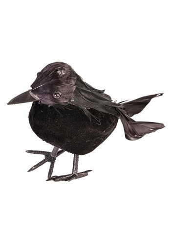 5 inch Black Crow11