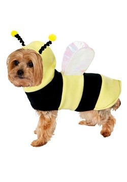 Bumble Bee Dog Costume Update 1
