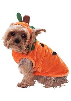 Pumpkin Dog Costume Update 1