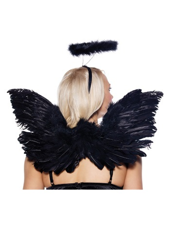 Click Here to buy Black Angel Wings and Halo Set from HalloweenCostumes, USA Funds & Shipping