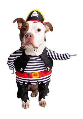 Pirate Costume for Pets