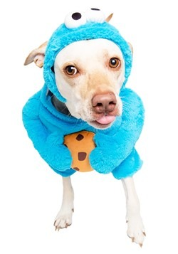 Sesame Street Cookie Monster Pet Costume