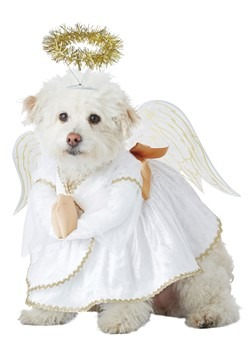 Heavenly Hound Pet Costume
