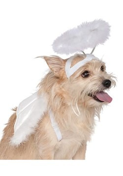 Angel Good Dog Costume