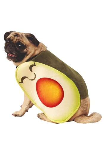 Adorable Avocado Dog Costume