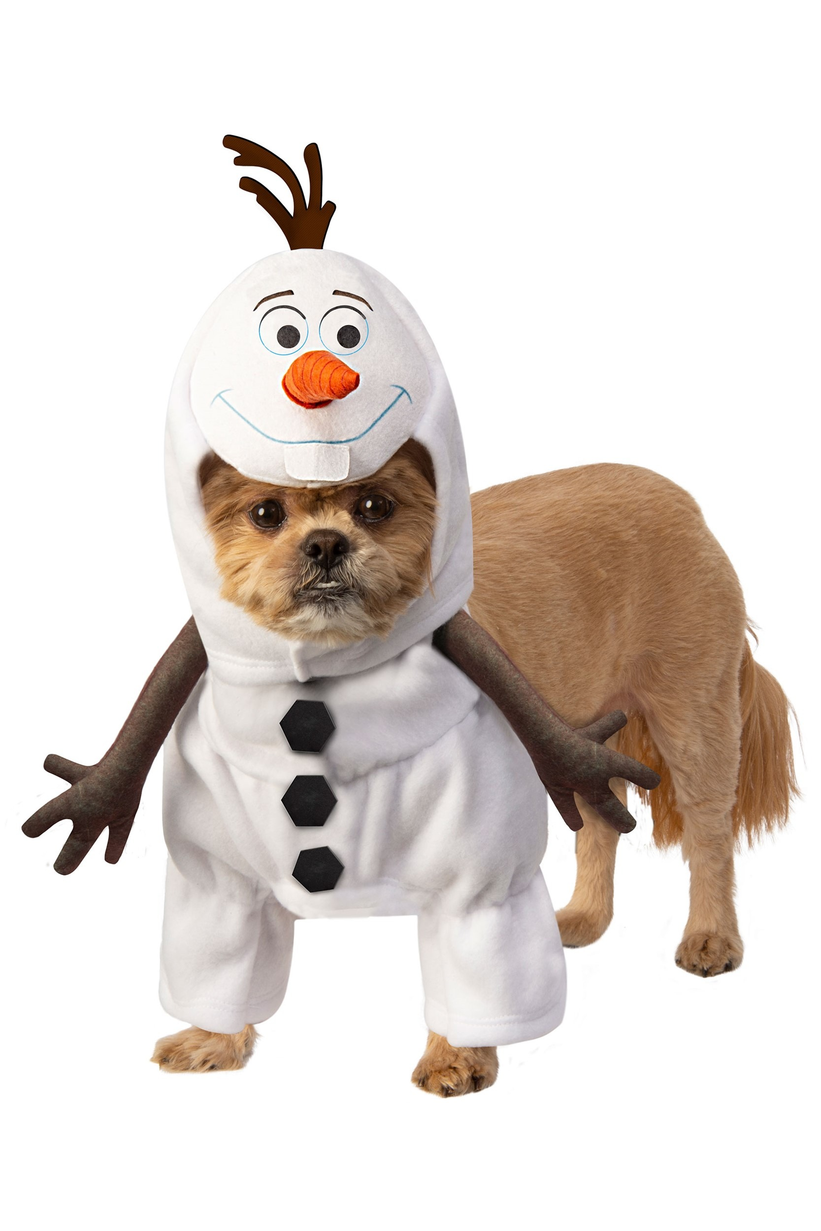 Disney Frozen Olaf Pet Dog Costume