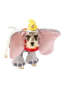 Dumbo Dog Costume