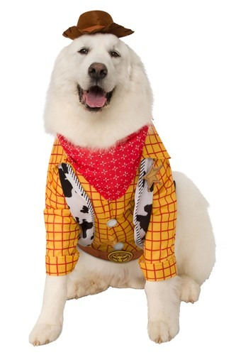 Toy Story Woody Pet Costume