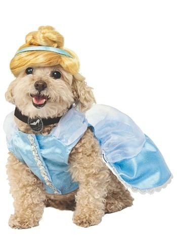 Dog Cinderella Costume
