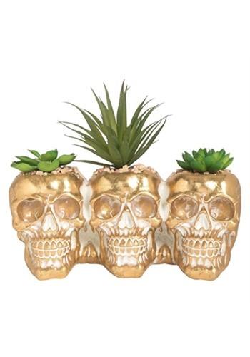 Resin Skull w/ Succulents
