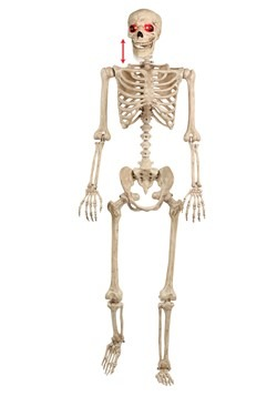 Mr. Crazy Bonez Animated Skeleton