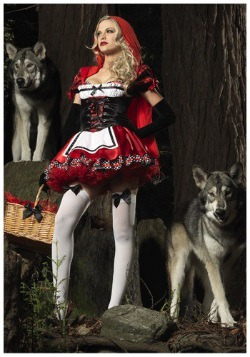 Divine Red Riding Hood Costume 1