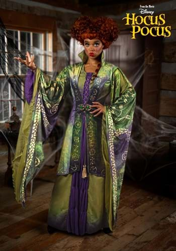 Women's Hocus Pocus Winifred Sanderson Costume