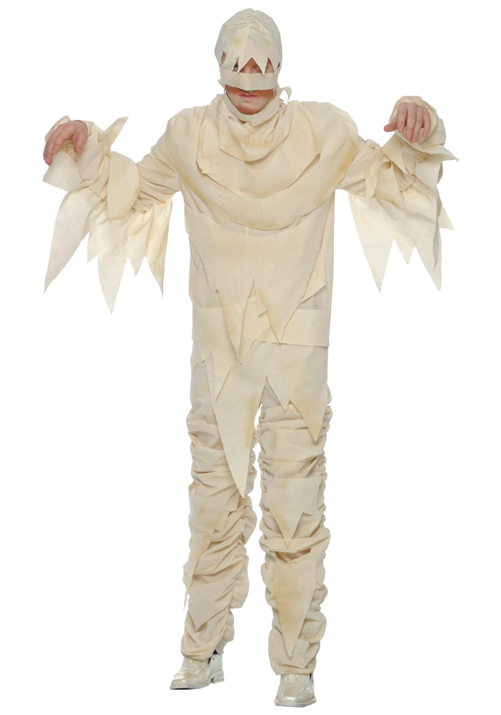 sc 1 st  Halloween Costumes & Adult Mummy Costume