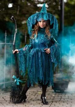 Girls Moonlight Spider Witch Costume-update