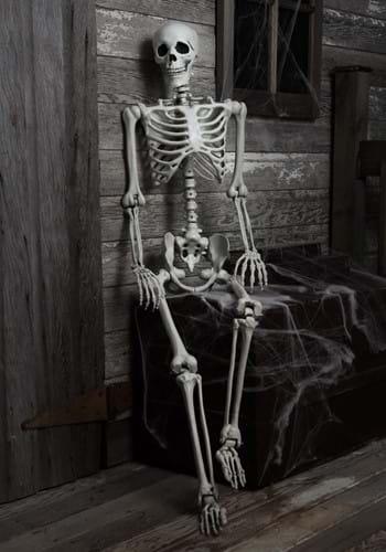 5 Ft Posable Skeleton main