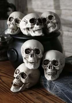Bag of 24 skulls