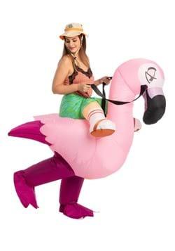 Inflatable Adult Flamingo Ride On Costume