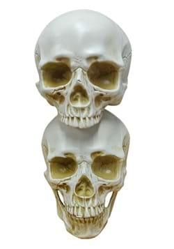 9 Skull Pile