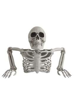 Skeleton Torso Groundbreaker