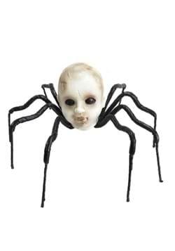24 Baby Head Spider
