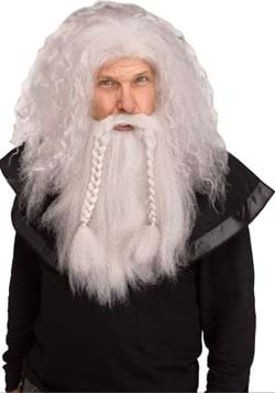 Grey Wizard Adult Wig and Beard Set