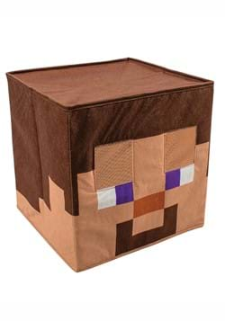 Minecraft Steve Block Head