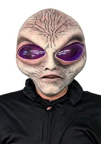 Grey Alien Adult Mask update