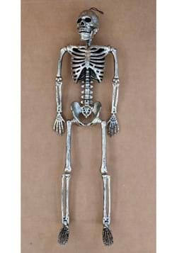 "60"" Gun Metal Life Size Posable Skeleton Prop"