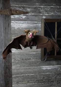 Brown Bat (MC0091)