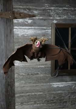 Brown Bat (MC0091)1